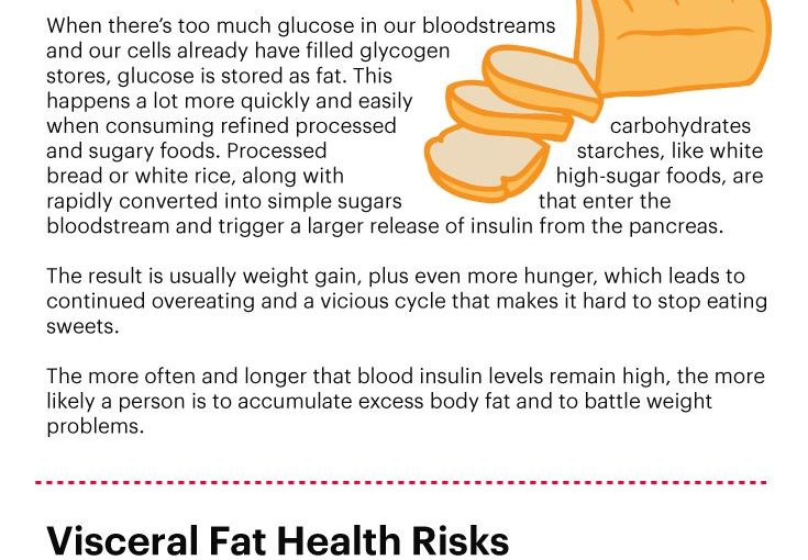 Visceral fat facts – Dr. Ax www.draxe.com #health #holistic #natural