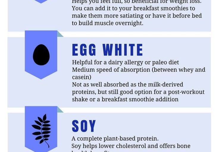 Which type of protein powder is best for muscle weight loss and more?