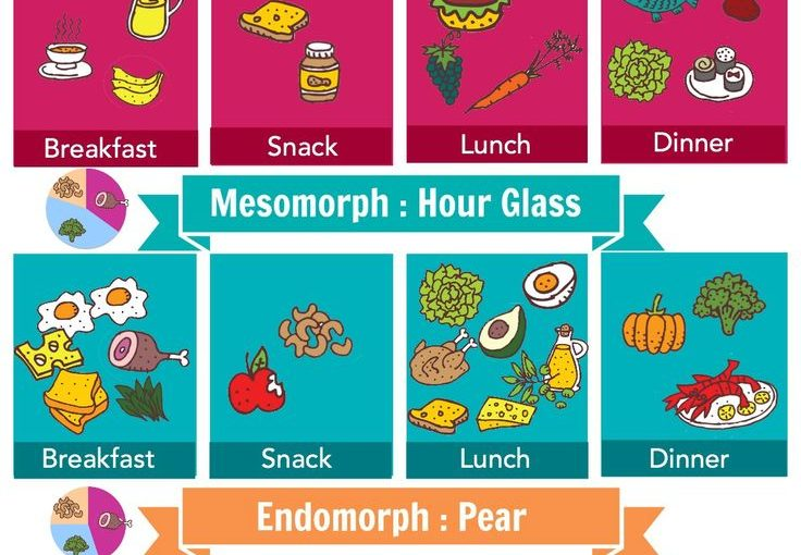 The right foods for your body type, you can train your metabolism to work …