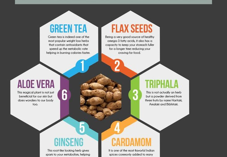 Herbs when used in diet work hard to reduce weight. Know 12 amazin …
