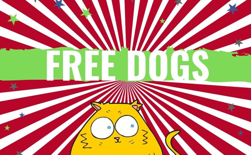Imagine a free dog? ⁣ ⁣ ⁣ ⁣ ⁣ Jokes! ⁣ ⁣ Now, though, I have caught your attention, imagine …